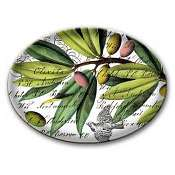 Michel Design Soap-Candy Dish-Olive Grove