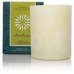 Thymes Offerings Candle-Abundance