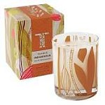 Thymes Indigenous candle-White Persimmon