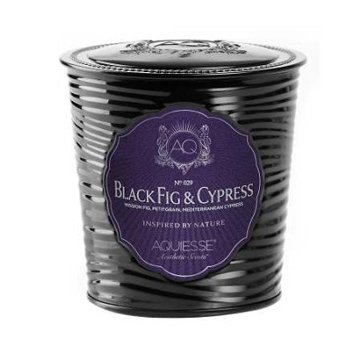 Aquiesse Black Fig & Cypress Soy Candle Tin