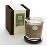 Aquiesse Alpine Meadow 100 Hr Soy Candle