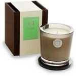 Aquiesse Cherimoya 100 hr Soy Candle-Keepsake Box