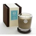Aquiesse Blue Agave 100 Hr Soy Candle