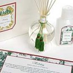 Seda France Holiday diffuser set