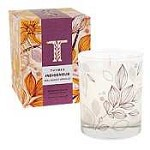 Thymes Indigenous candle-Malagasy Vanille