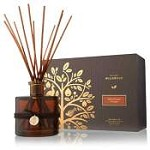 Thymes Wildwood Bitter Orange & Cedar Reed Diffuser