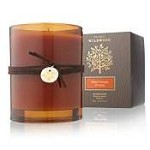 Thymes Wildwood Bitter Orange & Cedar Candle