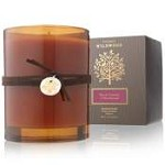 Thymes Wildwood Black Currant & Birchwood Candle