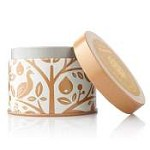 Thymes Wildwood Brandied Pumpkin & Chestnut Candle Tin