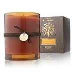 Thymes Wildwood Brandied Pumpkin & Chestnut Candle
