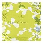 Thymes Wild Ginger Bath Powder Envelope
