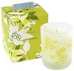 Thymes Wild Ginger Candle