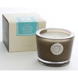 Aquiesse Blue Agave 45 Hr Soy Candle